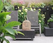 Landelijke strakke tuin lighoek Made